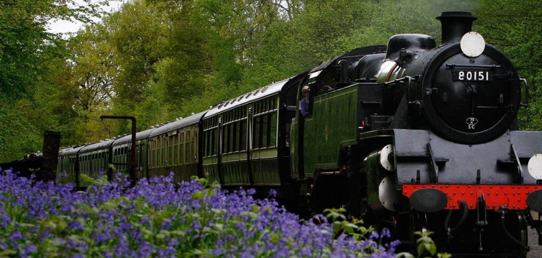 viewes-flowers-train-trees-locomotive